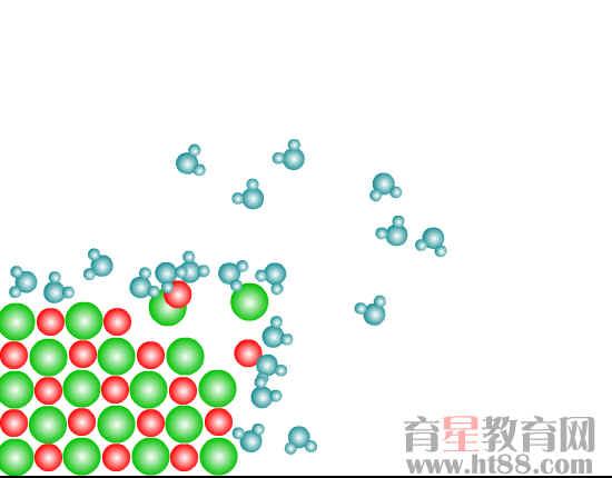 食盐晶体的溶解过程flash素材