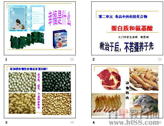 蛋白质的化学性质,氨基酸结构特点等知识
